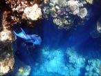bfoto ru 4226a Подводный фотоаппарат Sony Cyber shot DSC TX10 снимаем под водой!
