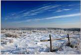 bfoto ru 165a Новые фотографии для моментальной покупки