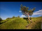 bfoto ru 2504a Скачать бесплатное фото высокого качества большого размера для цветопробы