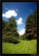 bfoto ru 308a Фотобанк бесплатно фото природы высокого разрешения