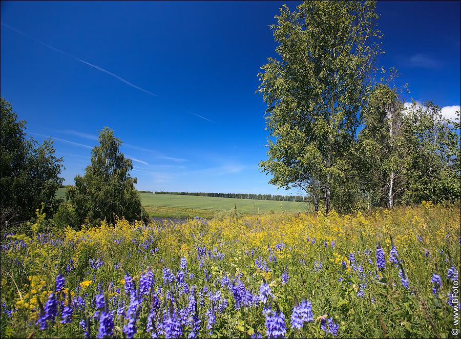 Пейзажи природы фото высокого разрешения
