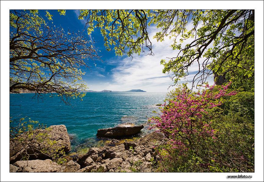 Крым в мае, фотографии весеннего крыма, южный берег крыма