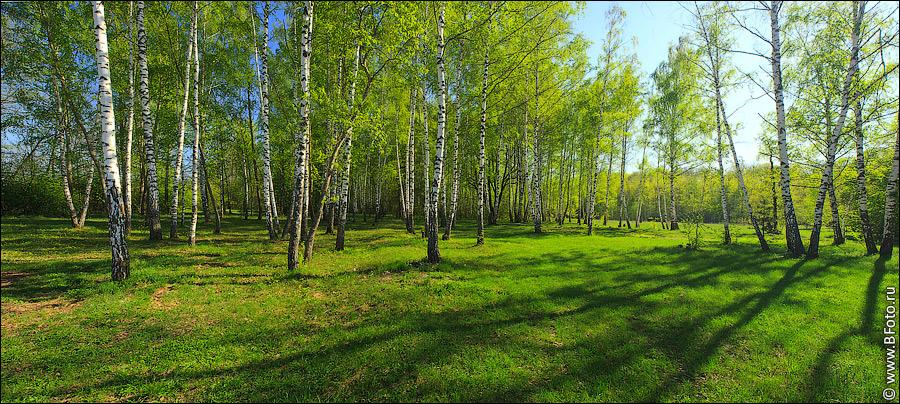 картинки природы россии красивые