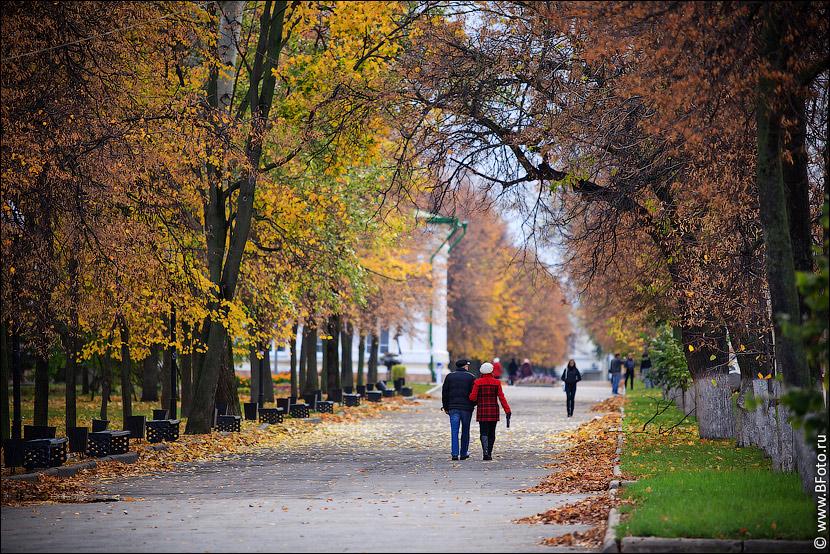 осень картинки парк