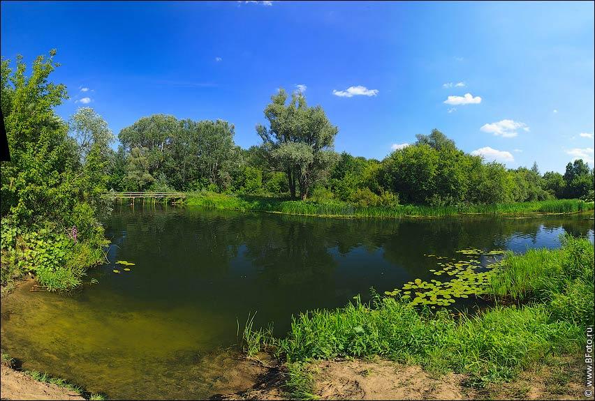 Природа липецкой области пейзаж