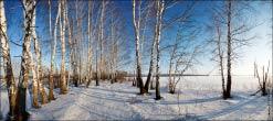 Панорама фотобанка природа март