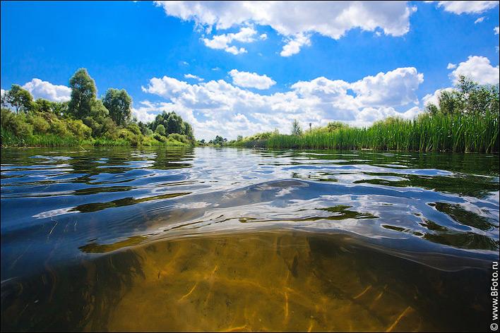 Фото природы в высоком разрешении