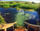 bfoto ru 4143a Фотосъемка пейзажа летом
