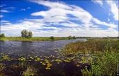 bfoto ru 4144a Фотосъемка пейзажа летом
