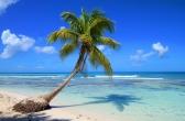 Пунта Кана Доминиканская республика