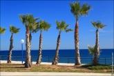 bfoto ru 4461a Обновления сайта   добавлены новые фото Испании, море, пальмы, острова