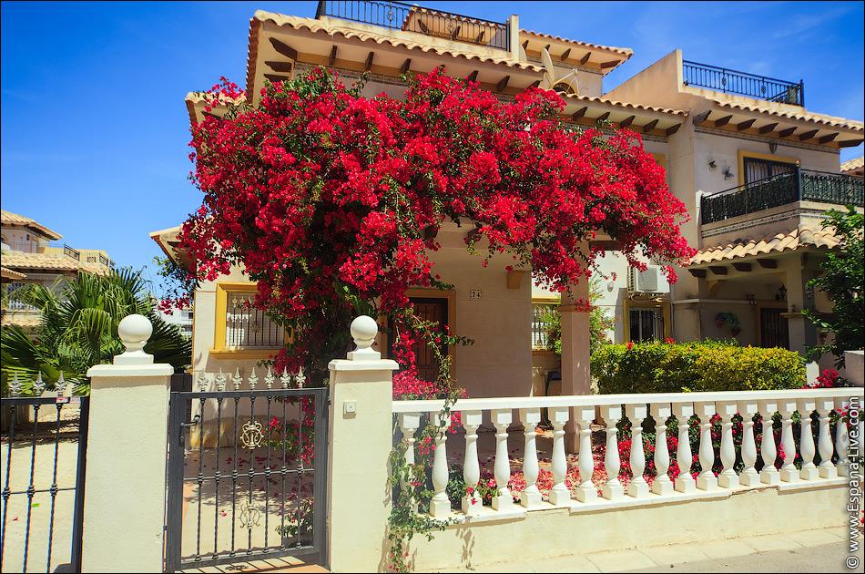 Дом в испании купит