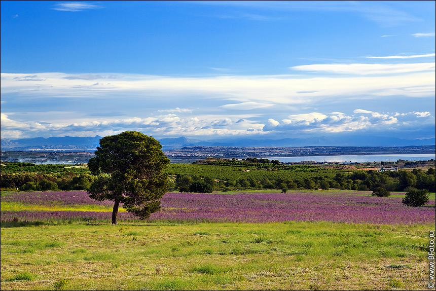 bfoto ru 4207 Летний пейзаж Испания фото высокого разрешения фотобанка бесплатно