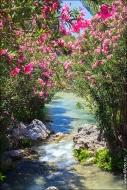 4589a Дыхание весны в интерьере дома, квартиры, весенние фотообои