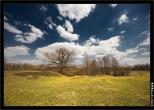 bfoto ru 1357a Дыхание весны в интерьере дома, квартиры, весенние фотообои
