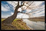 bfoto ru 1361a Дыхание весны в интерьере дома, квартиры, весенние фотообои