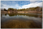 bfoto ru 2799a Дыхание весны в интерьере дома, квартиры, весенние фотообои