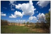 bfoto ru 2827a Дыхание весны в интерьере дома, квартиры, весенние фотообои