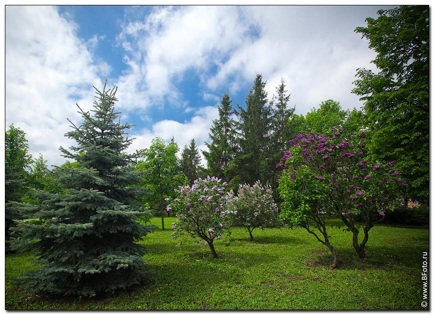Парк весною фото