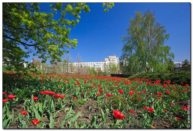Весна в городе