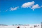 bfoto ru 3369a Дыхание весны в интерьере дома, квартиры, весенние фотообои