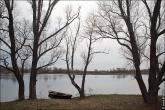 bfoto ru 4161a Дыхание весны в интерьере дома, квартиры, весенние фотообои