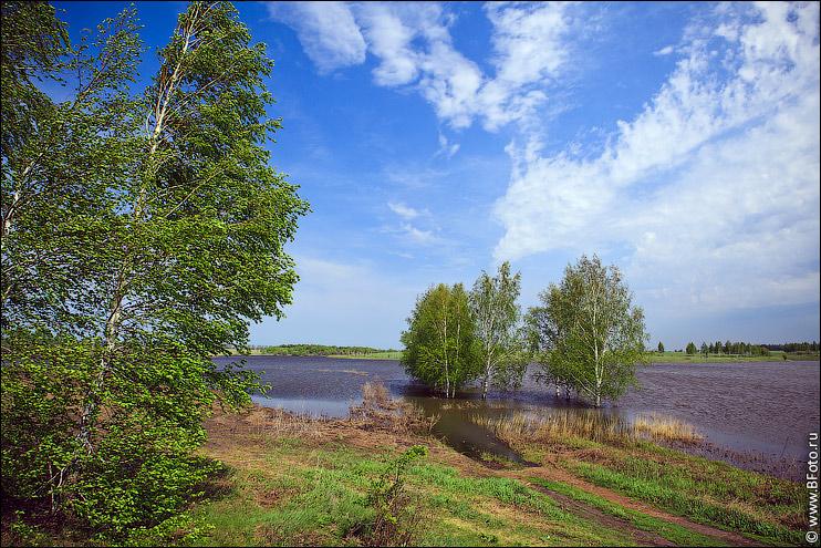 Фотообои пейзажи природы