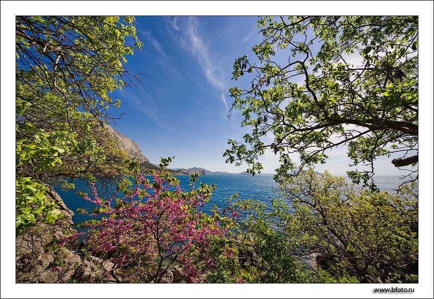 Весна в крыму, весенние фотографии крыма и моря