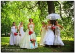 Сбежавшие невесты 2010 фото