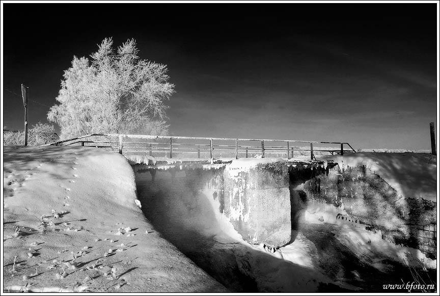Черно белые фото зимы