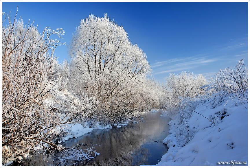 Река Мартынчик, Липецкая область, природа центральной России