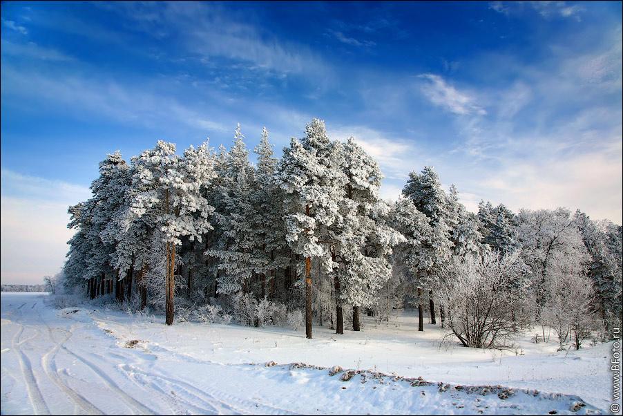 взято с сайта http://www.bfoto.ru.  Красивые зимние фото.