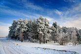 Winter landscape.  Set.12 Зимний пейзаж.