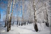 bfoto ru 2483a Фотообои 3д фото высокого разрешения купить в фотобанке