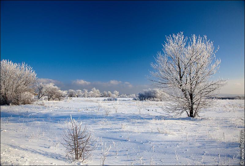 http://www.bfoto.ru/foto/winter/bfoto_ru_2512.jpg