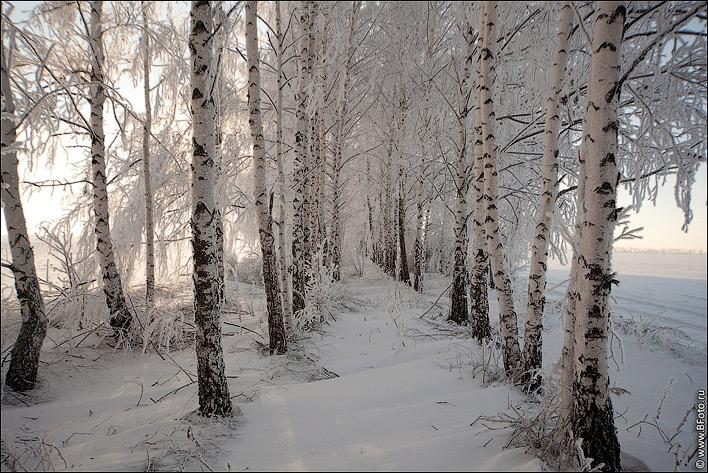 Картинки про зиму с высоким качеством