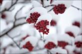 bfoto ru 4352a Зимние пейзажи, природа России в фотографиях русская зима