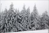 bfoto ru 4789a Фото зимы высокого разрешения, фотобанк, зимние пейзажи