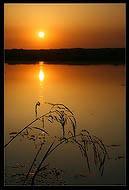 bfoto ru 64a Фотобанк бесплатно фото природы высокого разрешения