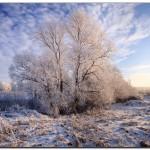 2011 winter panorams 1 150x150 Canon EF 24 70 mm f/2.8L USM отзыв, цены, фото