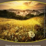 2012 konkurs 150x150 Победа в фотоконкурсе 2012 Краски природы Государственный Дарвиновский музей