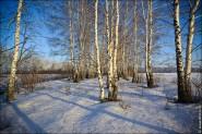 IMG 5477 185x123 Мартовские пейзажи, весна, март за окном