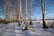 IMG 5479 185x123 Мартовские пейзажи, весна, март за окном