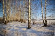 IMG 5481 185x123 Мартовские пейзажи, весна, март за окном