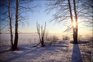 IMG 5490 185x123 Мартовские пейзажи, весна, март за окном
