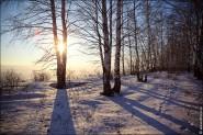 IMG 5491 185x123 Мартовские пейзажи, весна, март за окном