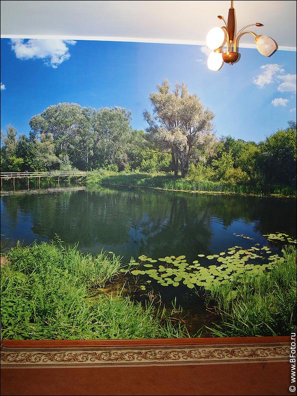 photooboi 4103 Получить бесплатно любой 1 оригинал фото высокого разрешения
