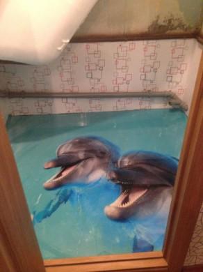 дельфины фото 292x390 Получить бесплатно любой 1 оригинал фото высокого разрешения