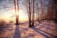 besplatno foto zima 185x123 Зима фото скачать бесплатно