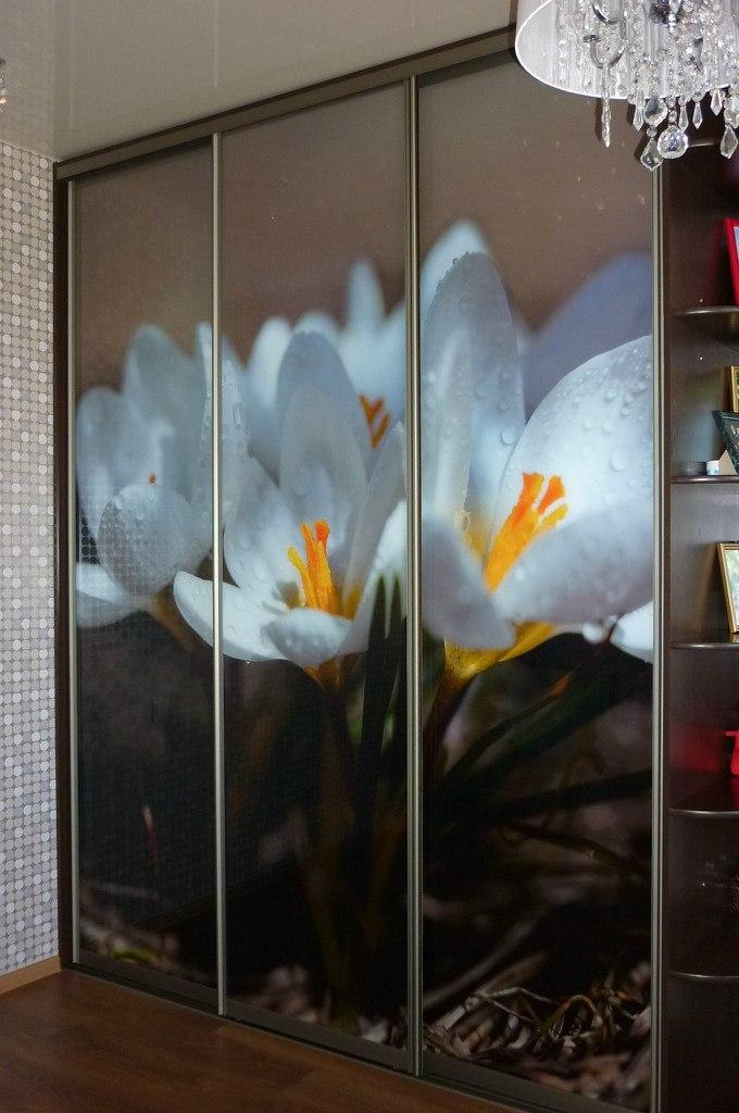 skaf kupe foto Фотография для шкафа купе, пример готовой работы фото